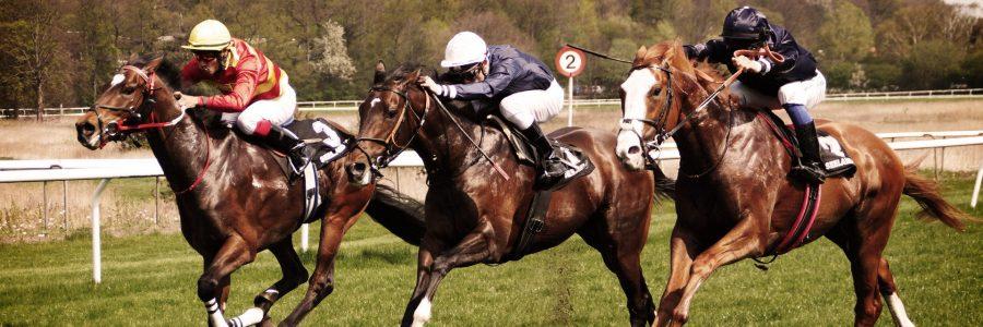 Best Horse Racing Betting Strategies
